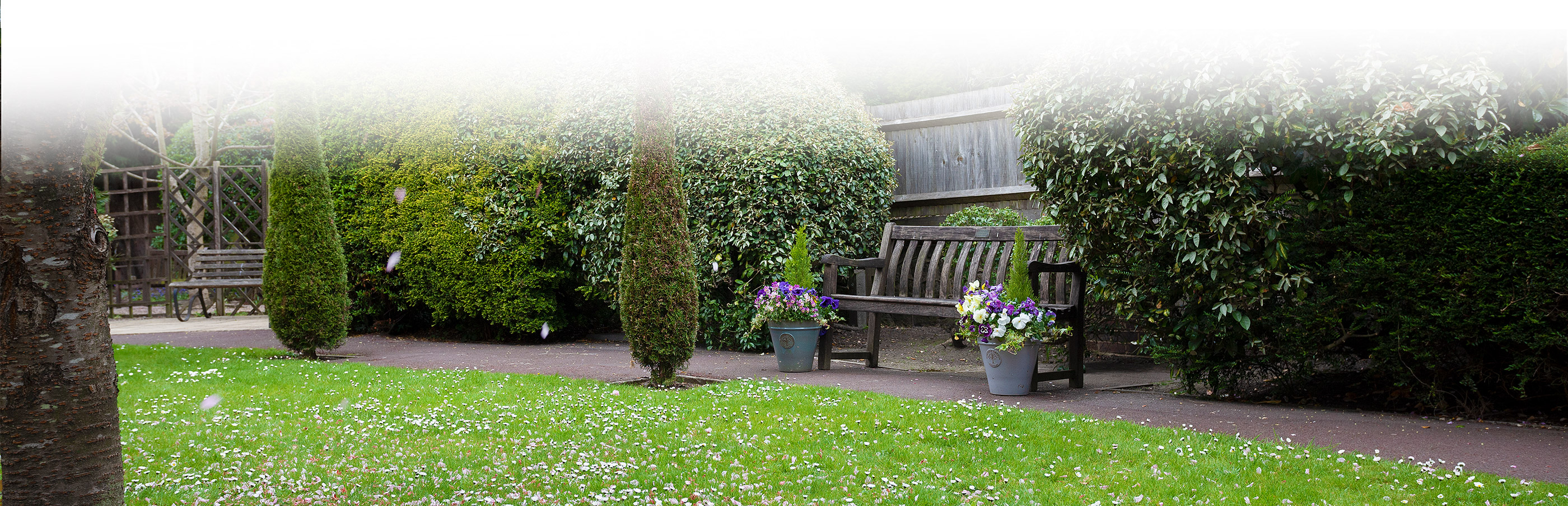 Garden chair view at chestnut view care home Haselmere